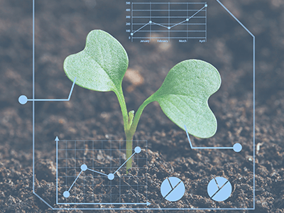 Intelligent Agricultural  Situation Analysis System